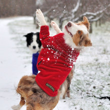 Dog Sweater in Red
