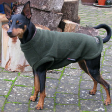 Dog Tank-Top in Loden Green