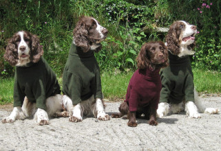 Spaniels in Loden Green and Mulberry Sweaters