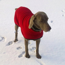Turtle-Neck Coat in Red