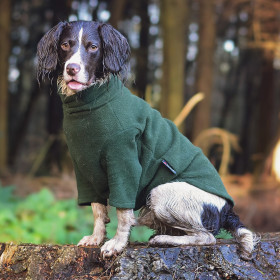 Loden Green Dog Sweater